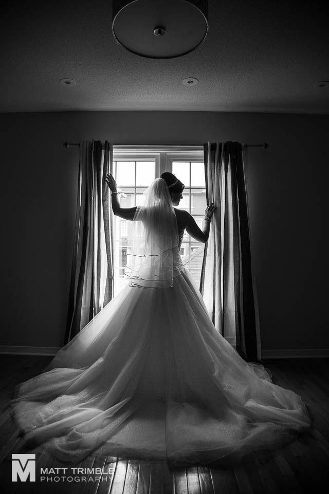 bridal portrait silhouette of back of dress