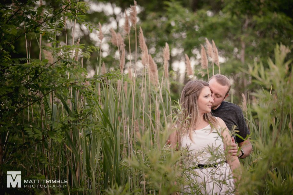 an engagement photo in the tall grass